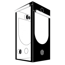 Гроубокс Homebox Ambient Q100