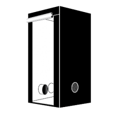 Гроубокс Homebox Ambient Q60