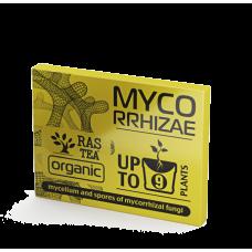Микориза Myco RRHizae
