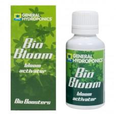 Стимулятор цветения Bio Bloom GHE 100 мл